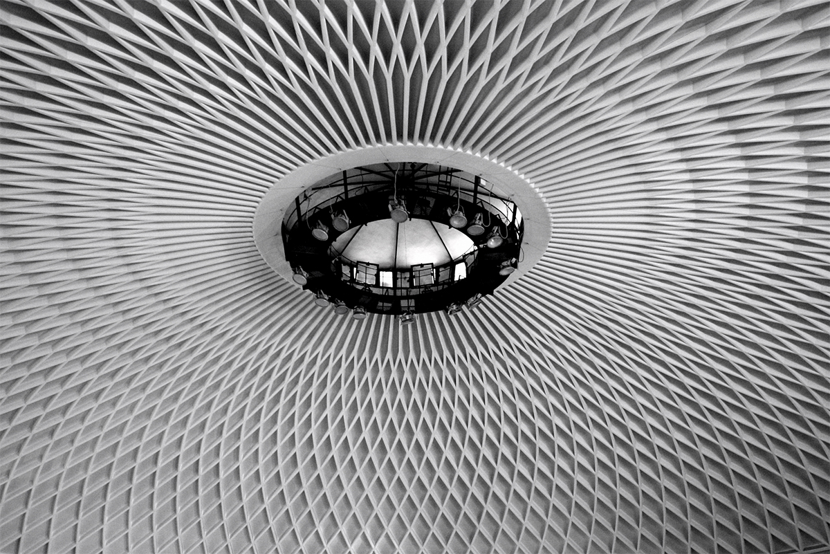 <i>Arquitectura biomimética:</i> O como aprender de la naturaleza para construir edificios sostenibles |Arquetipos